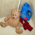 stuffed-bear-getting-a-wash.jpg