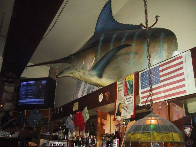Blue Marlin above the Bar.jpg