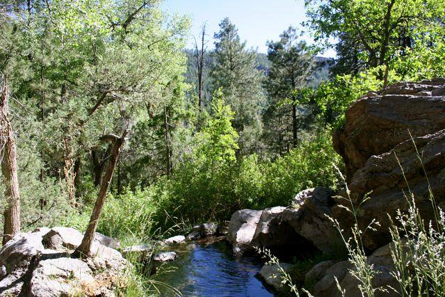 Warm springs in the San Miguel Mountains