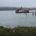 14 Oyster boat near Point Reyes.jpg