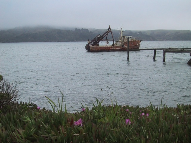 Oyster boat near Point Reyes