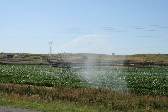 Irrigation of corn in Nebraska